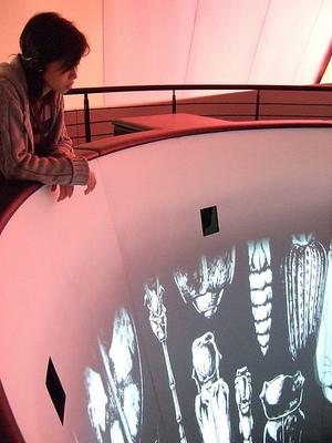 Chanel Moblie Art Interior_2.jpg